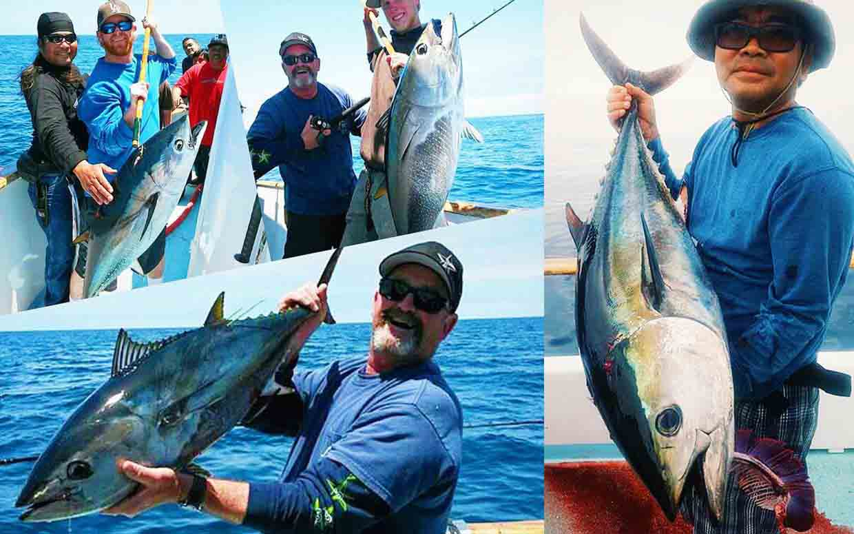 Tuna Fishing Usually Begins Sometime In June With Albacore And Bluefin First Earing Our Waters During Warmer Water Years Yellowfin