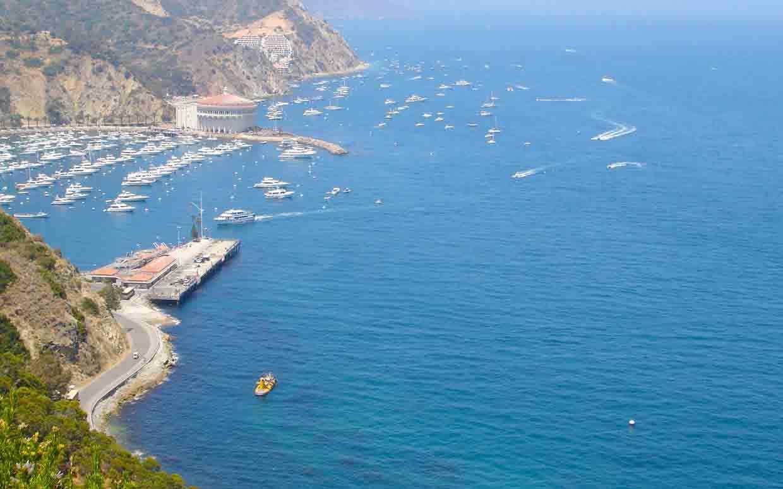Catalina island deep sea fishing information call 949 for Deep sea fishing newport