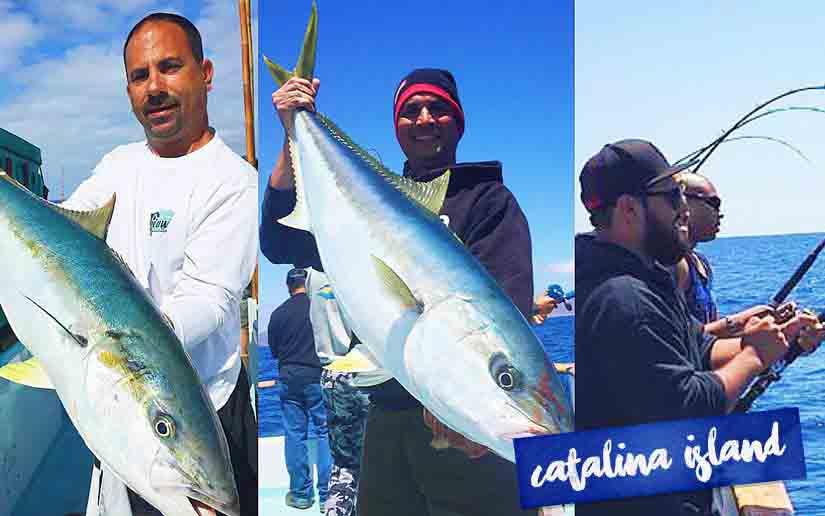 Catalina island deep sea fishing information call 949 for Catalina island fishing charters
