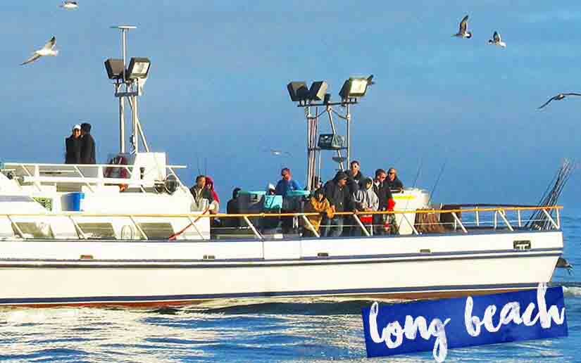 long beach deep sea fishing information call 949 675