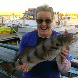 Dayna for Newport landing fish count